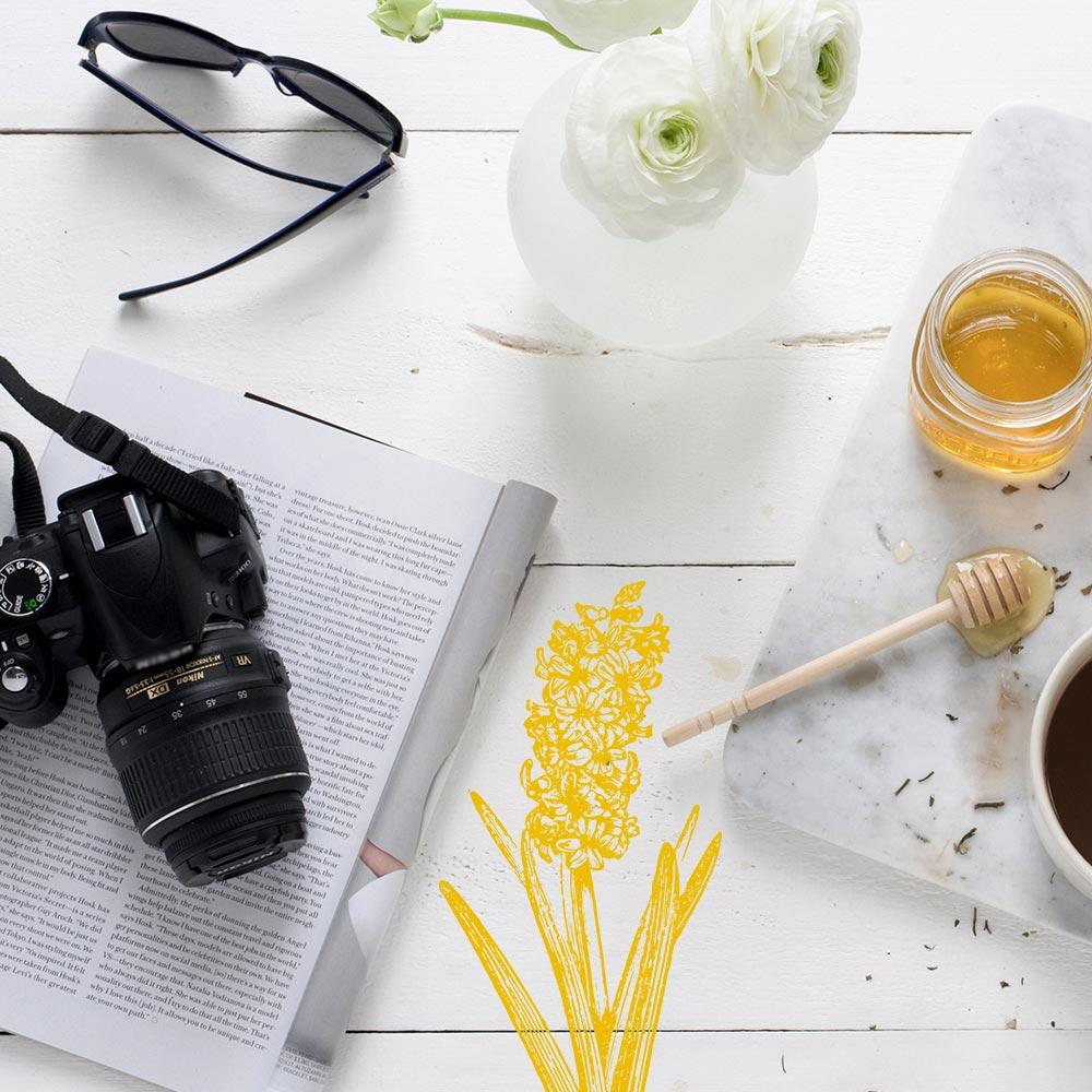 FREE Photography Resource Guide | nachesnow.com